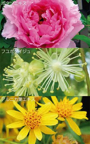 point1_photo